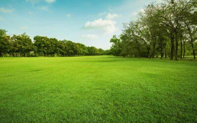 Land Acquisition: A Quick Guide